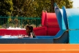 waterslide-tube